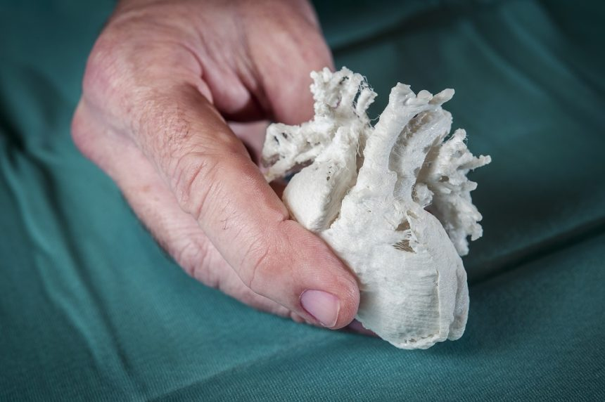 Pediatric Heart, 3d printed
