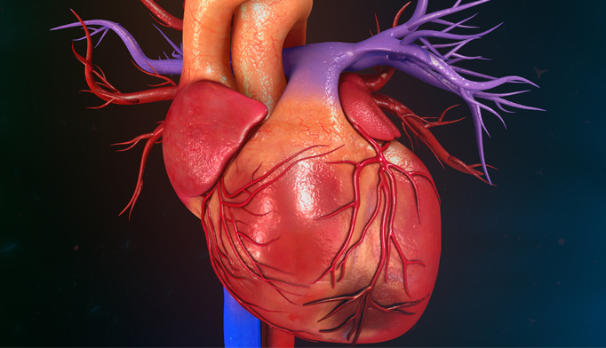 Lipoprotein(a) Reduction With Alirocumab Found to Lower Cardiovascular Risk After ACS - The Cardiology Advisor