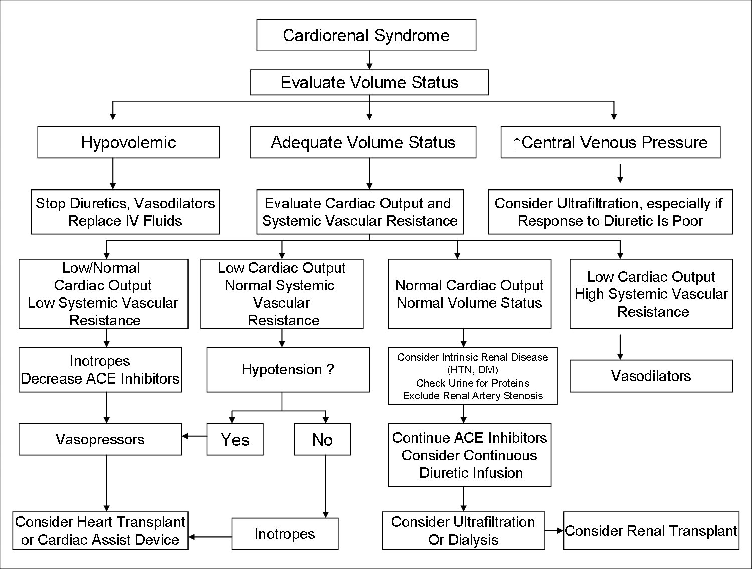 Cardiorenal syndrome in heart failure patients - The