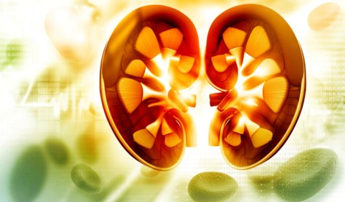 Chronic Kidney Disease Ups CV Mortality in Diabetes
