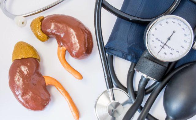 Kidneys, blood pressure