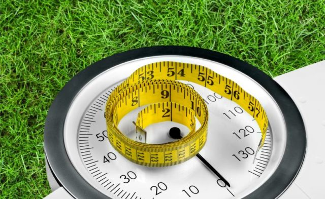 A scale and tape measure