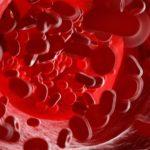 Illustration of human blood cells.