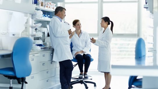 Doctors, researchers meeting, discussing